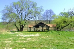 2007_0415(053)